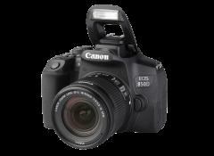 Free Card Reader 16GB SDHC High Speed Class 6 Memory Card for Nikon D90 DX DSLR Digital Camera Secure Digital High Capacity 16 G GIG GB 16GIG 16G SD HC