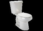 Dual Flush N2316 (Home Depot)