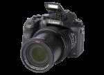 Lumix DMC-FZ2500