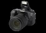 EOS 90D w/ 18-135mm IS USM NANO