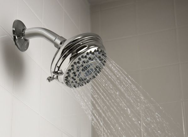 Waterpik Medallion NSL-033 showerhead