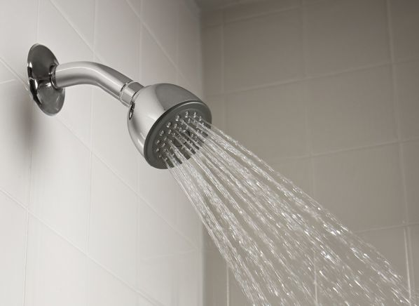 Delta Traditional Collection Touch-Clean RP38357 showerhead