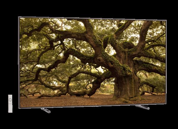 Samsung QN65Q9F TV