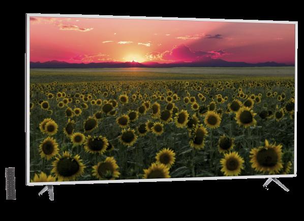 Vizio P65-E1 TV