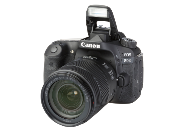 Canon EOS 80D w/ 18-135mm IS USM camera