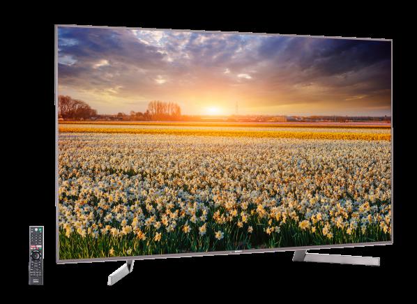 Sony XBR-65X900F TV