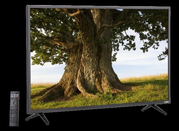 Vizio D40f-F1 TV