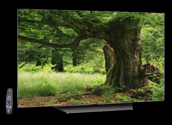 LG OLED55B8PUA TV