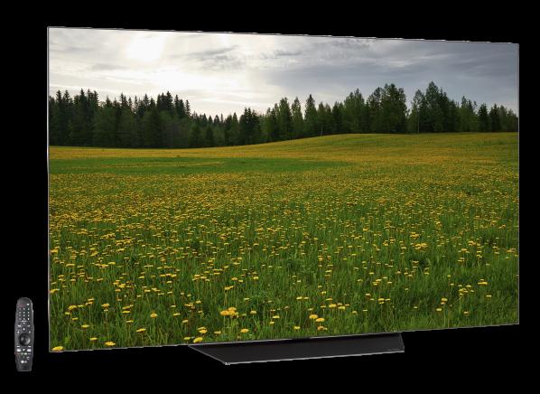 LG OLED65B8PUA TV