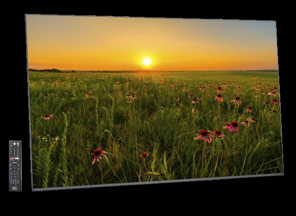 Sony XBR-55A9F TV