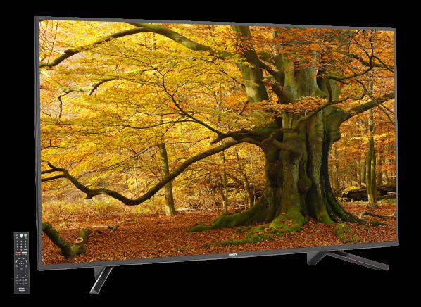 Sony XBR-65Z9F TV
