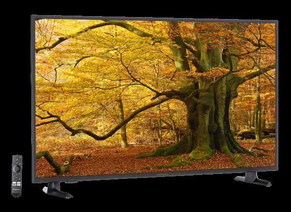Insignia NS-50DF710NA19 TV