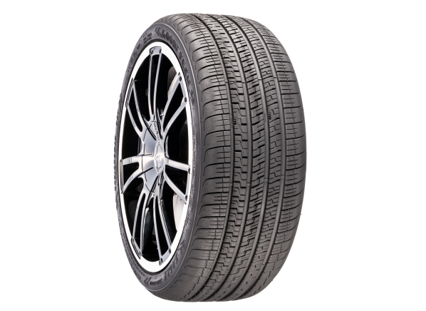Goodyear Eagle Exhilarate tire