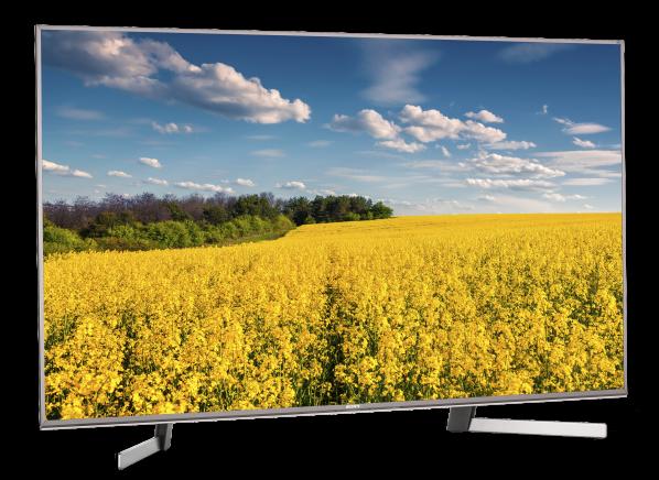 Sony XBR-55X950G TV