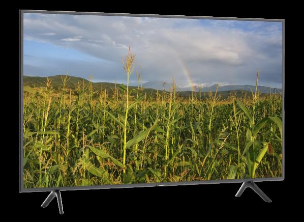 Samsung QN55Q60R TV