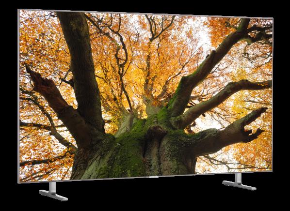 Samsung QN55Q80R TV