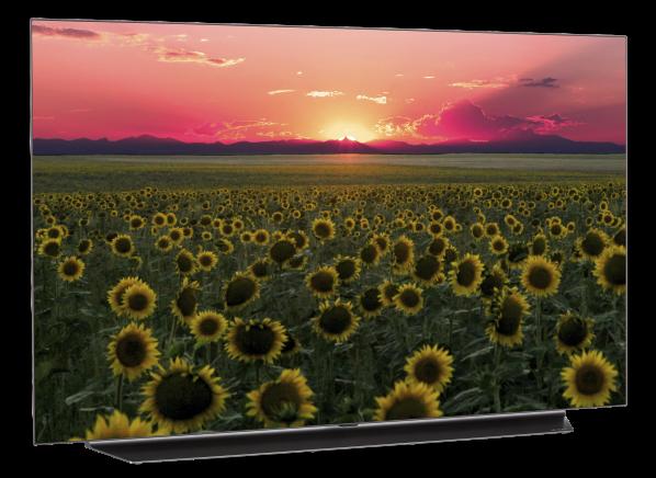 LG OLED55C9PUA TV