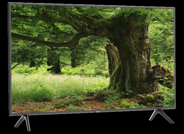 Samsung QN49Q6DR TV