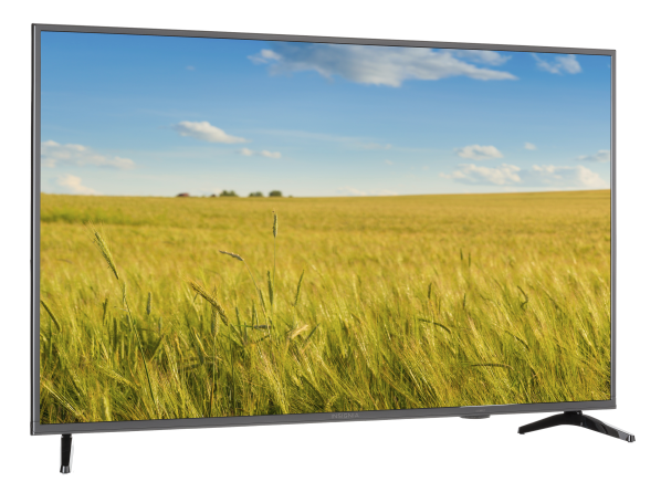 Insignia NS-55D420NA20 TV