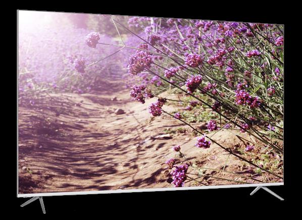 Vizio P659-G1 TV