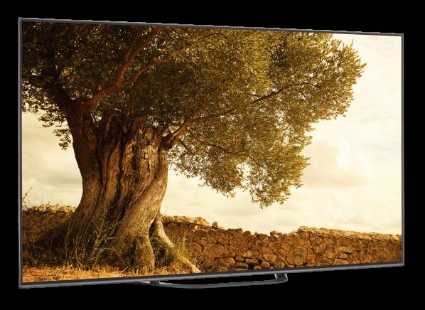 Sony XBR-65A8G TV