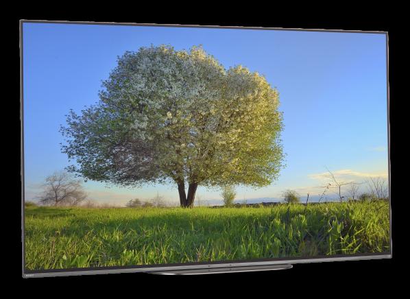 Sony XBR-55A9G TV