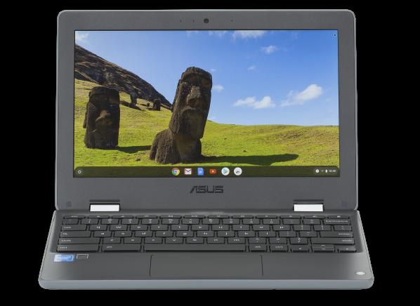 Asus Chromebook Flip C214MA-YS02TS computer - Consumer Reports