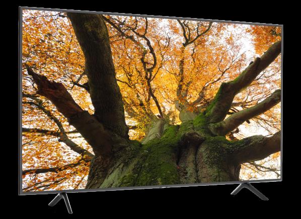 Samsung QN75Q6DR TV