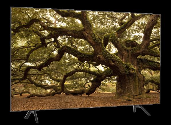 Samsung QN65Q7DR TV