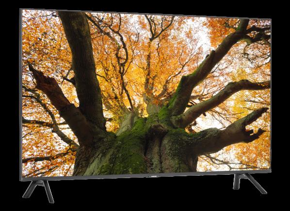 Samsung QN49Q7DR TV