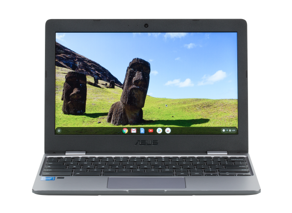 Asus Chromebook C223NA-DH02 computer