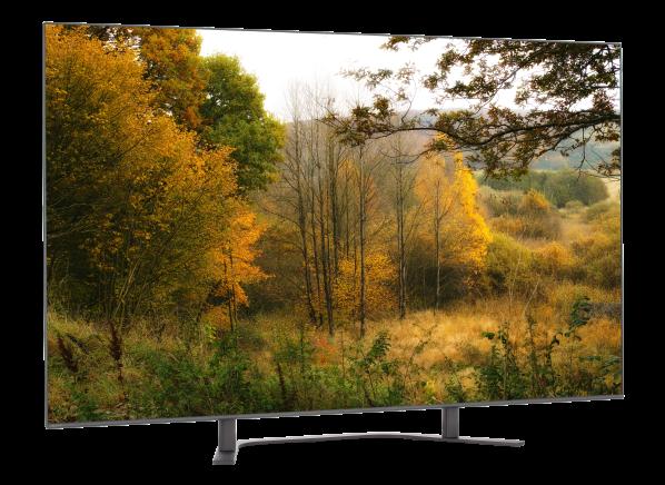 Sony XBR-55A8G TV