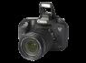 Canon EOS 7D Mark II w/ EF 50mm 1.8 STM thumbnail