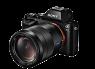Sony Alpha A7S w/ T FE 24-70mm f/4 ZA OSS thumbnail