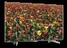 Sony XBR-65X850G thumbnail