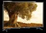 Vizio V436-G1 thumbnail