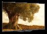 Sony XBR-65A8G thumbnail