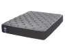 Sealy Response Performance Chestnut Street Cushion Firm thumbnail