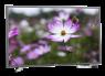 Samsung UN40N5200 thumbnail