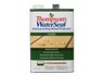 WaterSeal Waterproofing Wood Protector Clear (Home Depot)) thumbnail