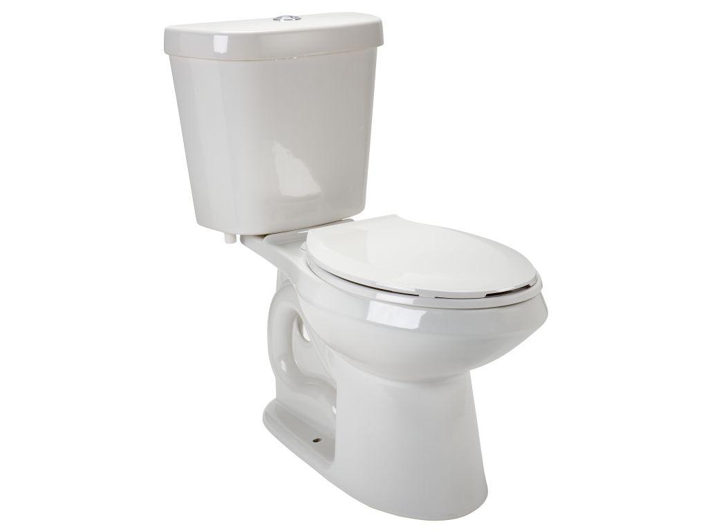 Glacier Bay Dual Flush N2316 (Home Depot) Toilet - Consumer Reports