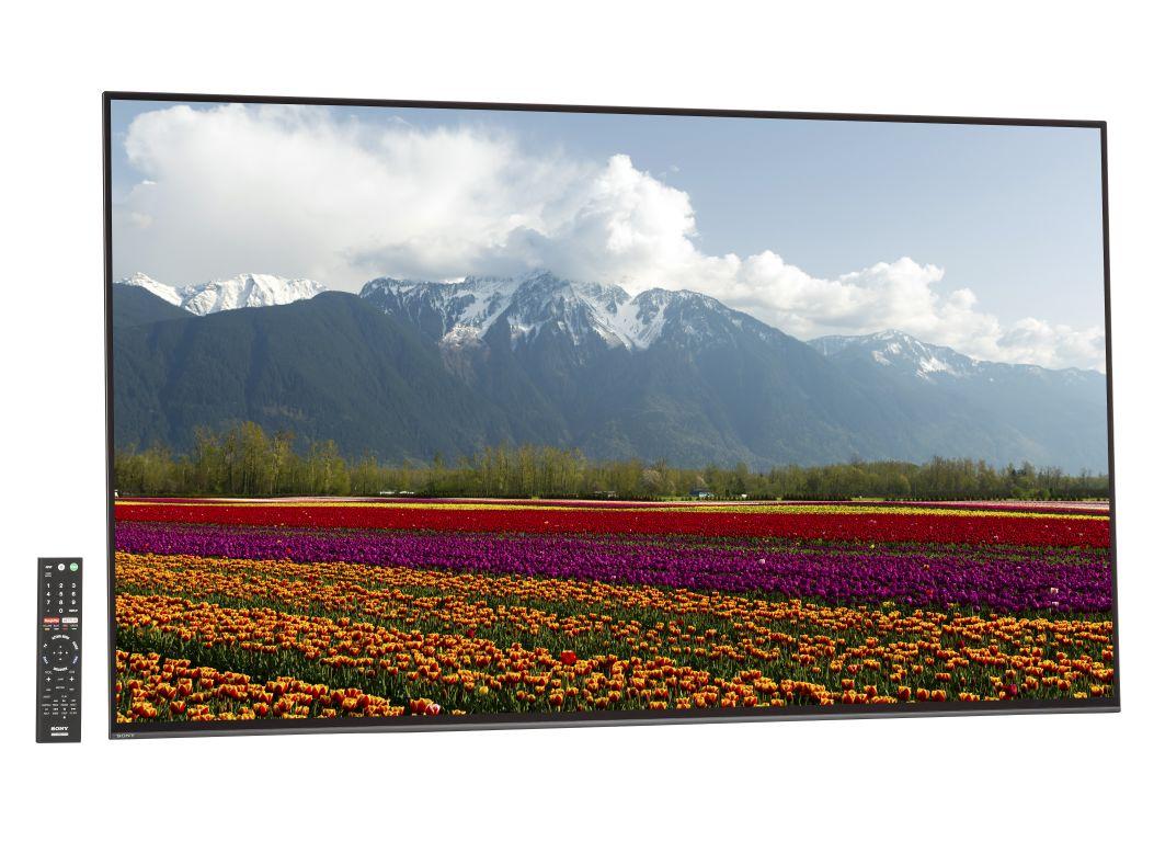 Sony Bravia XBR-55A1E - Consumer Reports
