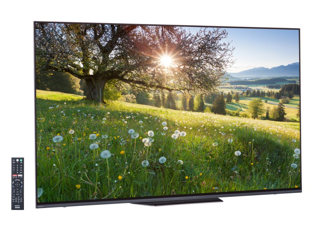 Sony Xbr 55a8f Price Amp Shop Consumer Reports